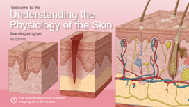 Understanding the Physiology of the Skin