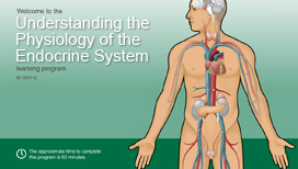 Understanding the Physiology of the Endocrine System