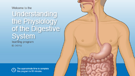 Understanding the Physiology of the Digestive System